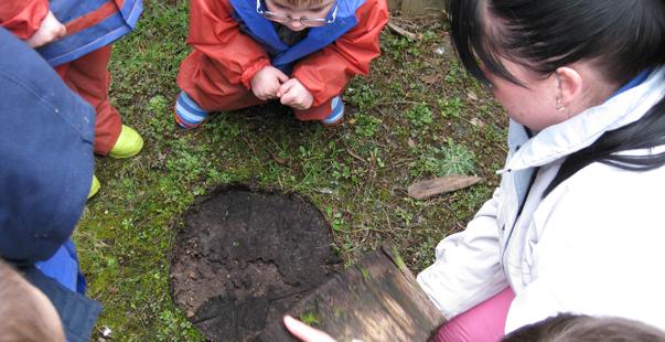 Kites Nursery Website Image Forest School